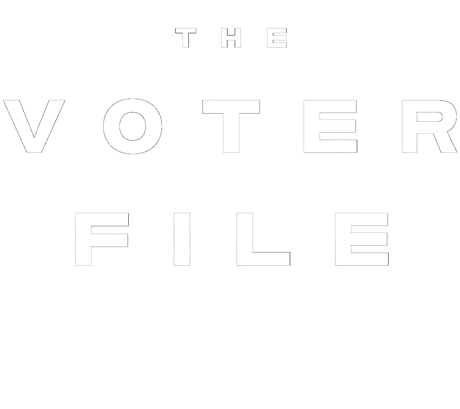The Voter File, A Novel by David Pepper